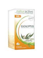 Naturactive Gelule Eucalyptus, Bt 30 à ROSIÈRES