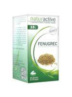 Naturactive Gelule Fenugrec, Bt 30 à ROSIÈRES