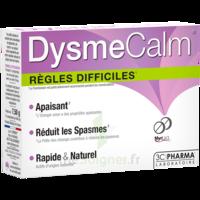 Dysmecalm Comprimés B/15 à ROSIÈRES