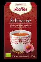 Yogi Tea Echinacee à ROSIÈRES