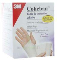 Coheban, Blanc 3 M X 7 Cm à ROSIÈRES