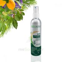 Naturactive Assaini'spray 200ml à ROSIÈRES