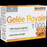 3 Chenes Phytotherapie Familiale Solution Buvable Gelée Royale 1000 10 Ampoules/10ml à ROSIÈRES